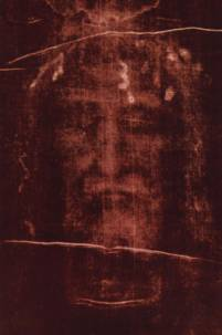 The Holy Face on the Shroud of Turin