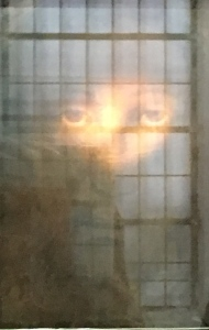 The Divine Prisoner, Holy Face of Manoppello photo: Patricia Enk